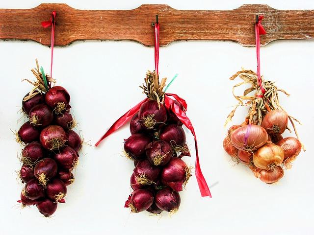 Consejos sobre como sembrar cebolla