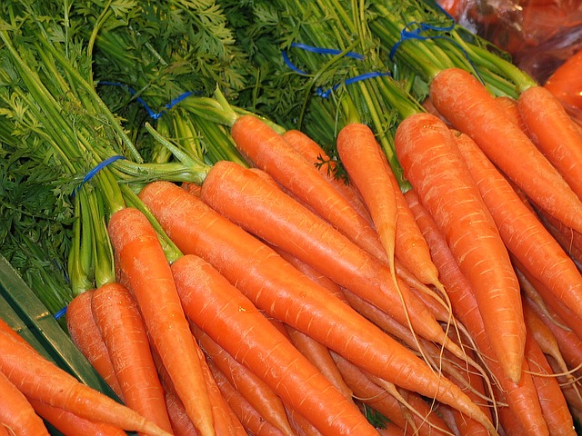 Como Sembrar Zanahorias Consejos A Tener En Cuenta Aprende a 【 recrecer zanahorias 】 paso a paso con estos sencillos consejos: como sembrar zanahorias consejos a