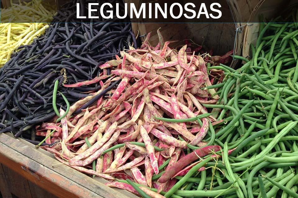 leguminosas o legumbres