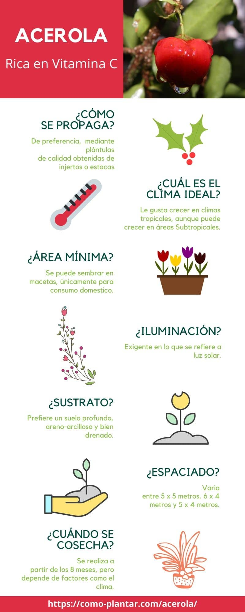 Guía para el cultivo de acerola