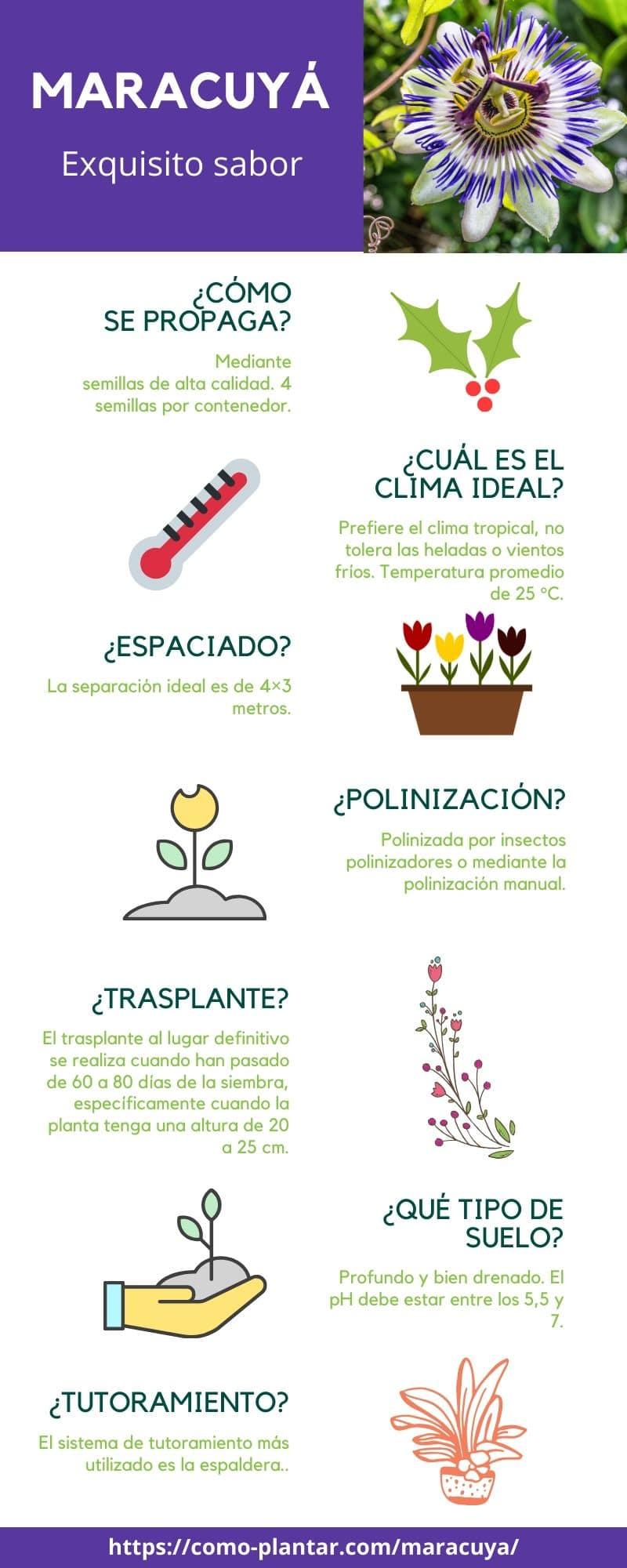 Guía para el cultivo del maracuyá