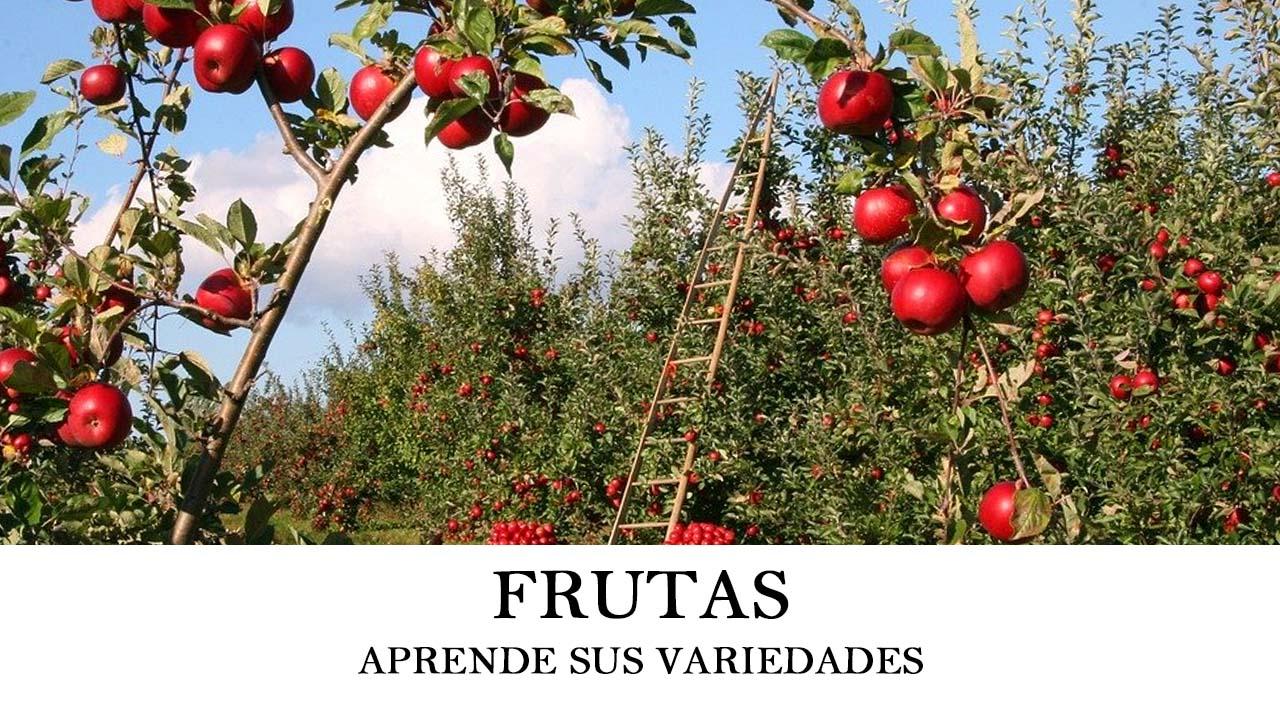 variedades y tipos de frutas