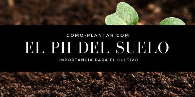 Importancia del pH del suelo para una cosecha exitosa