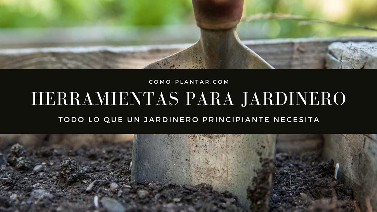 Herramientas para jardinero principiante